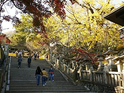 秋の行楽シーズンは沢山の人が石段を昇って行きます