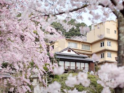 満開の桜と離れ・延寿閣