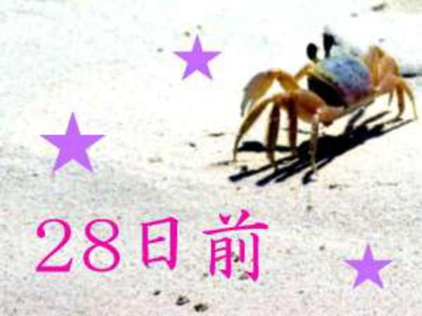 ◆28日前◆【ナツトク!】滑り込みセーフでまだまだおトク★夏先取りなら今でし...