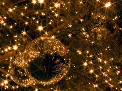 今年のクリスマスは、温泉リゾートで「ちょっと特別」な思い出に!