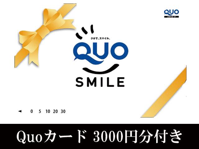 ☆Quoカード3000円分☆付いてます!!