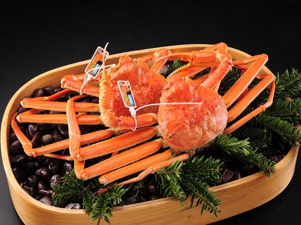 <国産本ズワイガニ>蟹