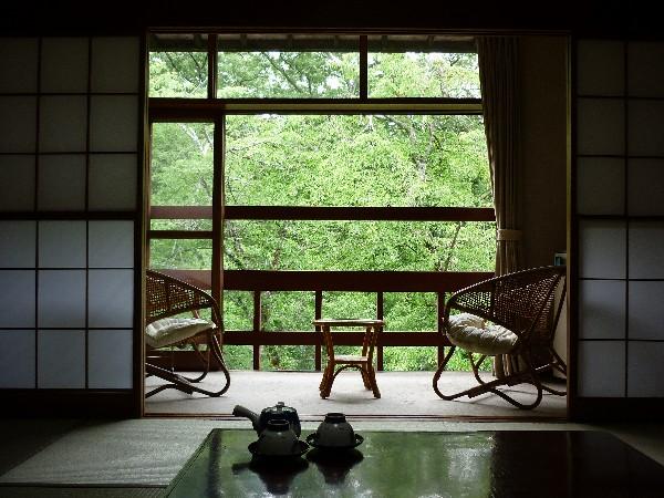 朝は、ゆっくり窓を開けて、自然林を眺めて、