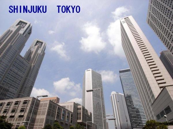 西新宿のシンボル,都庁をはじめとした高層ビル.