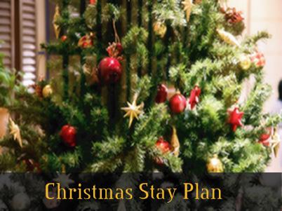クリスマス期間限定プラン